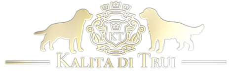 Logo-gold-2018-3